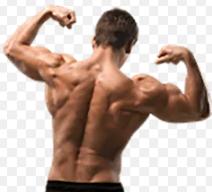 Musculin active - efeitos secundarios  - ordem- Encomendar