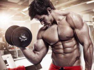 Flexuline Muscle Builder - farmacia - forum - preço