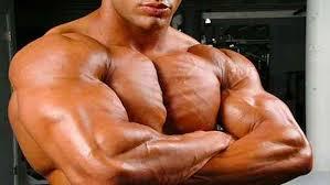 Amarok - para massa muscular - farmacia - opiniões - capsule