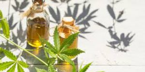 Cannabis Oil - limpeza do corpo - capsule - forum - onde comprar
