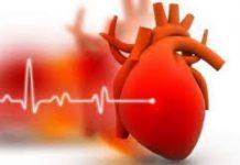 Cardiline - preço - como usar - farmacia