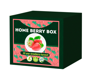 Home berry box - Portugal - Amazon - efeito