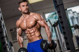 Nitro Strength - muscle supplement - criticas - opiniões - funciona