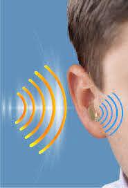 Izolivin - melhor audição - como aplicar - Amazon - funciona