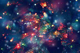 Holiday Lights - no farmacia - onde comprar - no Celeiro - em Infarmed - no site do fabricante